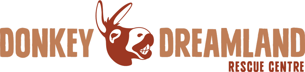 Donkey Dreamland